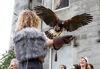 Dundas Castle Activites Falconry Edinburgh Scotland.jpg