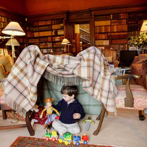 Den building in the Library