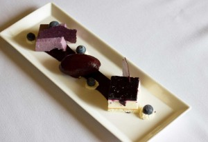 assiette of blueberries. pannacotta, mousee, tuille, sorbet straight