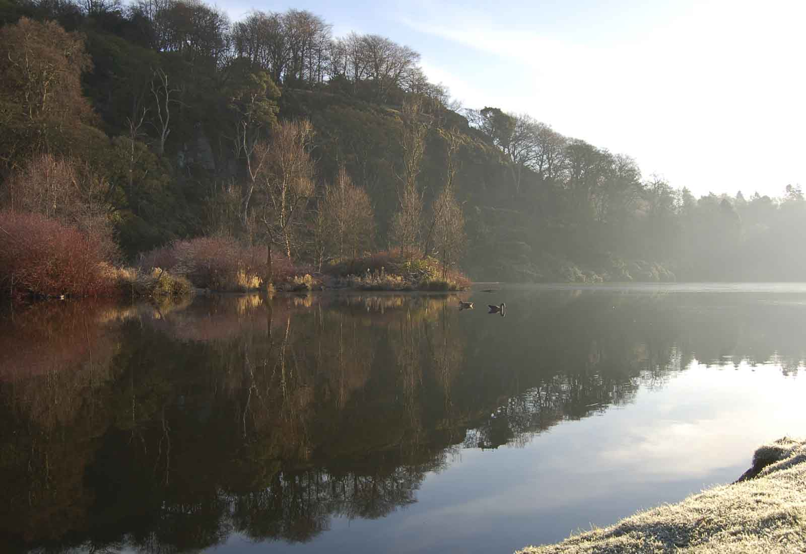 morning on the loch